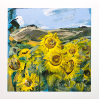 Sunflowers from Oare 8/250