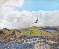 Soaring Golden Eagle over the Highlands - Collectors Edition
