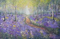 Dappled Bluebell Forest