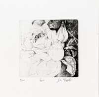 Etching of a Rose
